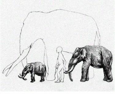 elephant man (2)